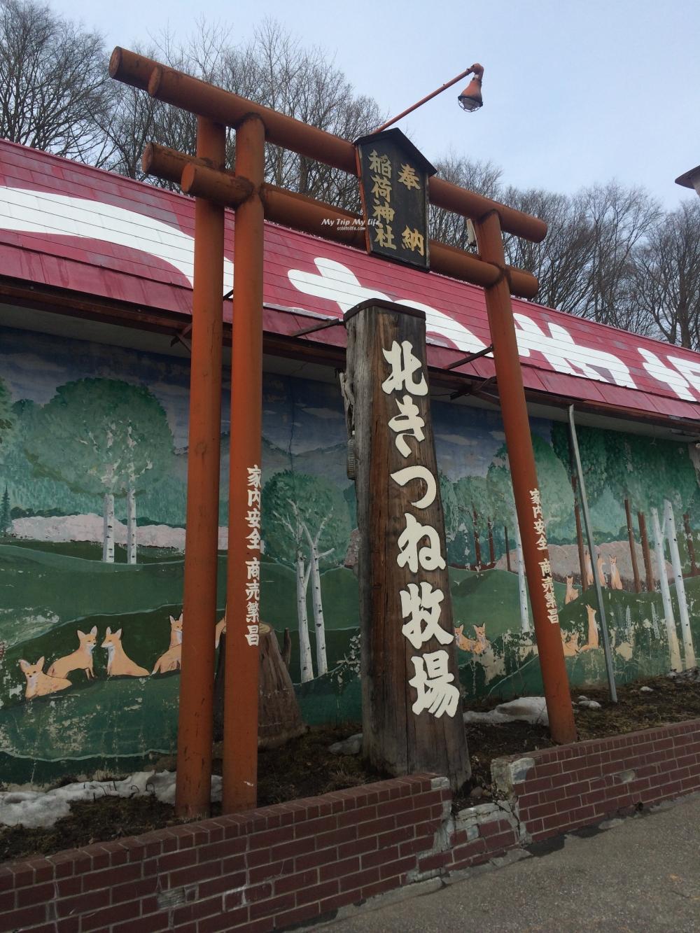 【日本旅行】北海道 – 北見狐狸村(北きつね牧場) @MY TRIP ‧ MY LIFE