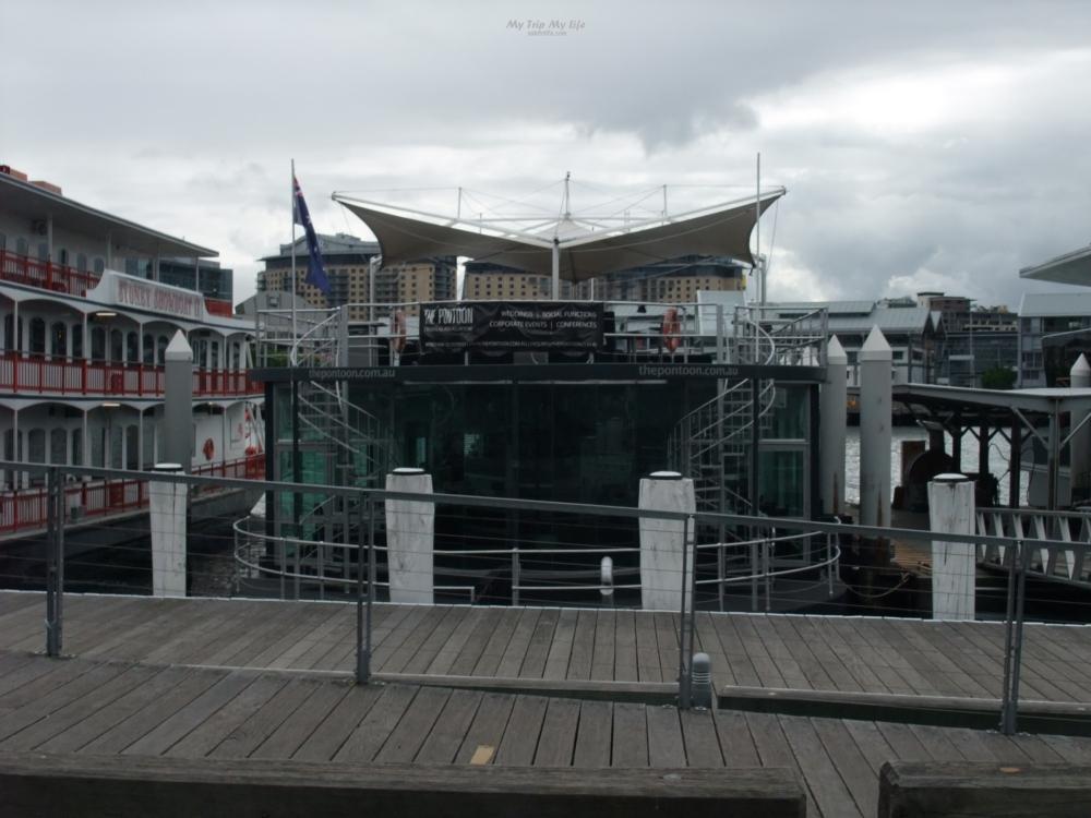 【澳洲旅行】雪梨皇家植物園、雪梨港遊船看滿雪梨歌劇院 @MY TRIP ‧ MY LIFE