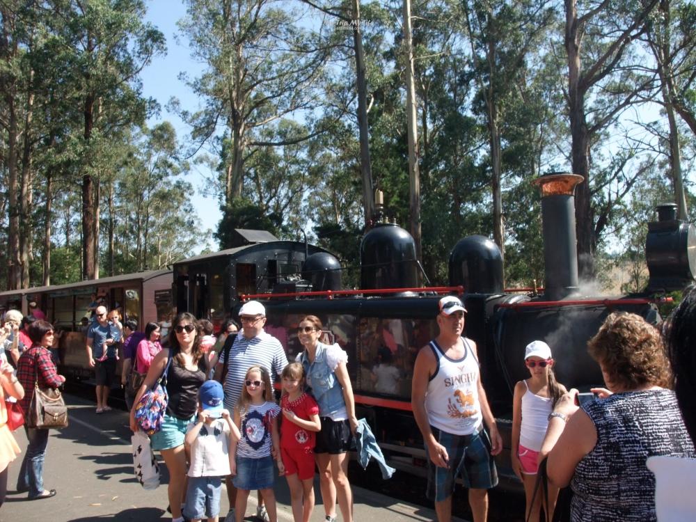 【澳洲旅行】墨爾本 – 普芬比利蒸汽小火車Puffing Billy搭車體驗 @MY TRIP ‧ MY LIFE