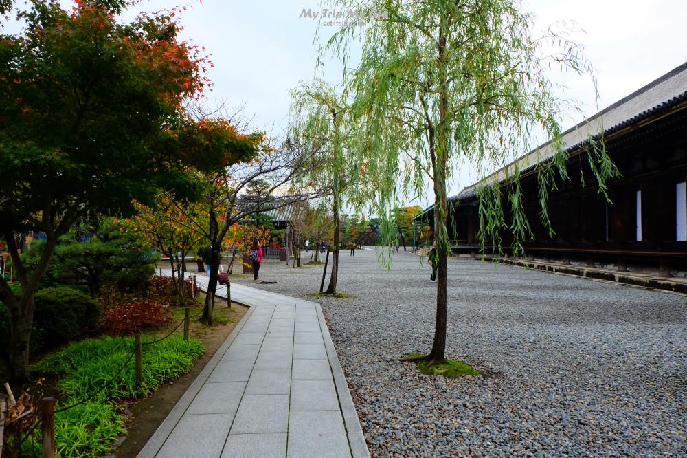京都|三十三間堂 @MY TRIP ‧ MY LIFE